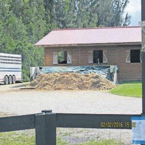 wendy Rhodes Palm Beach Post Horse Mnaure HiPoint solution