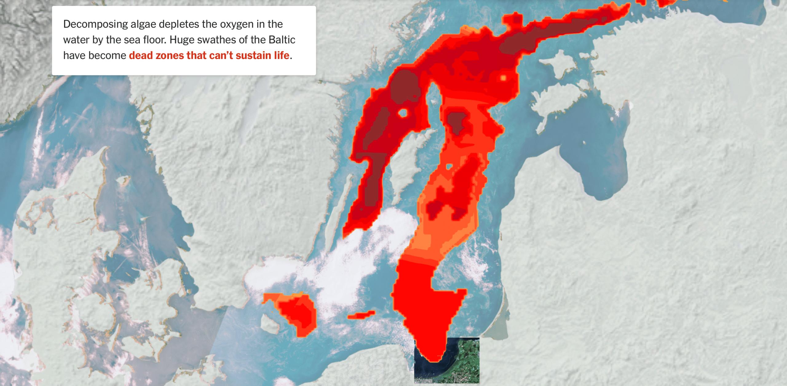 European pollution Algae depeletex oxygen - dead zone - Page HiPoint Agro Bedding